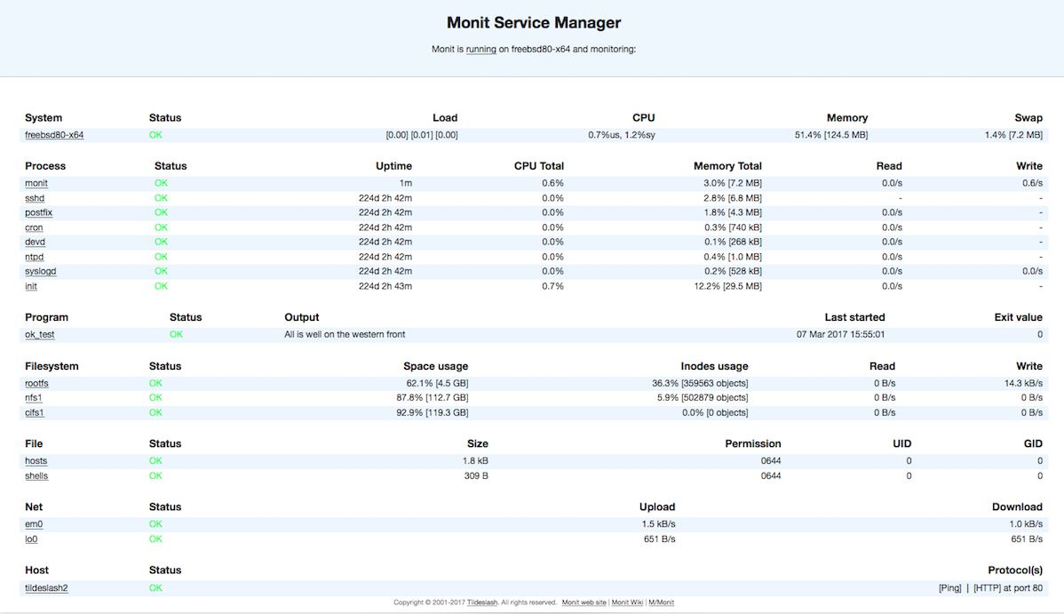 Monit Screenshot
